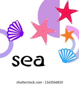 starfish shell sea vector background