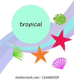 starfish shell tropical plant vector background
