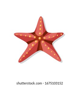 Starfish for summer design elements. Vector Illustration in cartoon style isolated on white background.