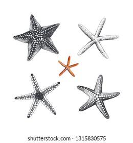 Yıldızlar Sulu Boya Görseller Stok Fotoğraflar Ve Vektörler