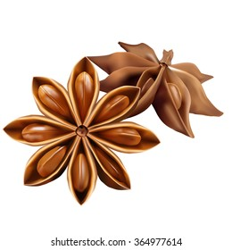 Stars of  anise isolated on the white background. Vector illustration