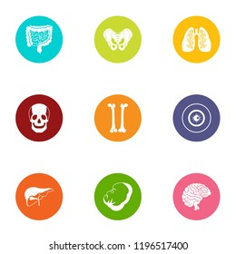 State of the carcass icons set. Flat set of 9 state of the carcass vector icons for web isolated on white background