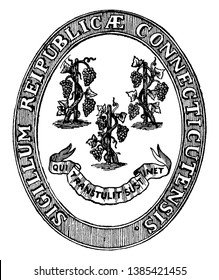 The state seal of Connecticut, this oval shape seal has three grapevines in middle, and below a ribbon with latin motto QUI TRANSTULIT SUSTINET, vintage line drawing or engraving illustration