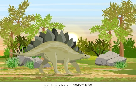 Stegosaurus in prehistoric forest. Prehistoric animals and plants. Scene from Mesozoic or Jurassic period. Realistic Vector Landscape