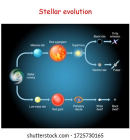 Stellar evolution. Life cycle of a star. from Stellar nursery and Red giant, to Black and White dwarfs, Planetary nebula, Supernova, Pulsar, Neutron star, and Black hole