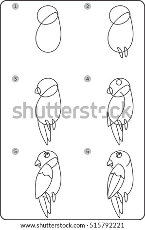 Step By Step Drawing Bird Easy Stock Vector Royalty Free 515792221