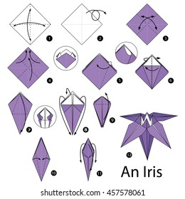 Step by step instructions how make stock vector royalty free step by step instructions how to make origami an iris flower mightylinksfo