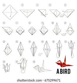 Step by step instructions how to make origami A Bird