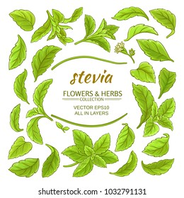 stevia elements vector set on white background