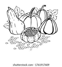 Seed Mosaic Pumpkin   Kids' Crafts   Fun Craft Ideas ...   280x260