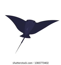 Stingray animal. Aquatic wildlife, tropical marine creature. Underwater fish. Isolated vector illustration in cartoon style