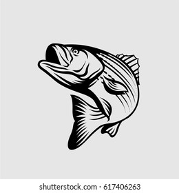 Stiped Bass Vector Illustration Black and White