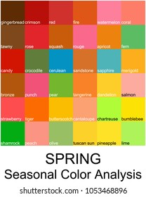 Stock vector color guide with color names. Seasonal color analysis palette for spring type. Type of female appearance