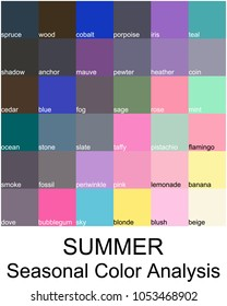 Stock vector color guide with color names. Seasonal color analysis palette for summer type. Type of female appearance