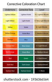 Stock vector corrective coloration chart. Hair dye numbering system. Level, undertone, corrective tone