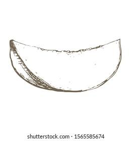 Stock vector hand drawn botanical illustration with a Thai mango slice. One engraved mango fruit. Exotic tropical vegetarian fruits. Use for market, cafe, smoothie restaurant menu, textile print