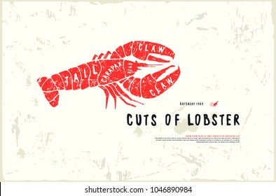 Stock vector lobster cuts diagram in the style of handmade graphics. Illustration with rough texture. Color print on white background