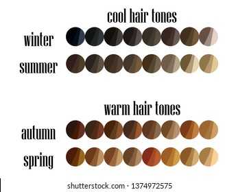 Stock vector seasonal color analysis hair colors palette for all types of female appearance