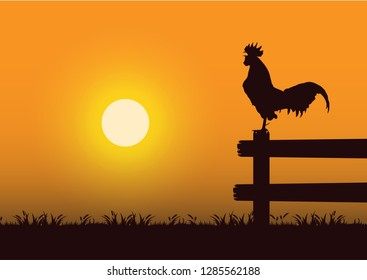 stock vector silhouette crowing rooster in the grassland graphic illustration
