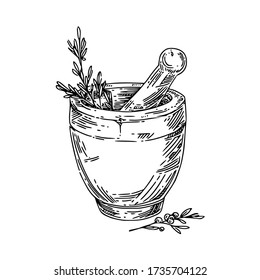 stone mortar with herbs. Sketch. Engraving style. Vector illustration.