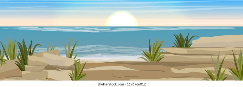 Stony coast of the sea or ocean with shards of rocks and thickets of grass. Seascape. Vector landscape