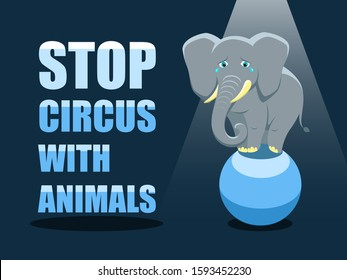 Stop circus with animals. Poster against abuse animals in circuses. Banner with text and grey elephant on the ball on blue background. Problem of exploitation of wild animals in circuses.