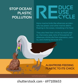 Stop ocean plastic pollution-Albatross feeding plastic to its chick