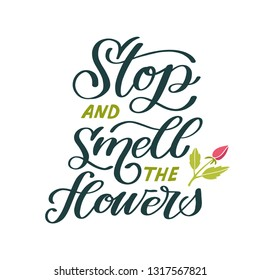 Stop and smell the flowers. Hand lettered gardening quote with a rose. Vector illustration. Isolated on white background