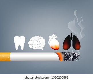 Stop smoking, World no tobacco day. Smoking is harmful to human organs. Resulting in organ damage and premature. Illustration.