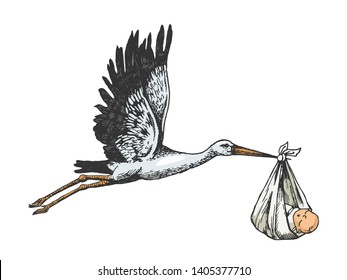 Stork crane carry baby color sketch engraving vector illustration. Scratch board style imitation. Hand drawn image.