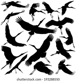 Stork silhouettes collection sets