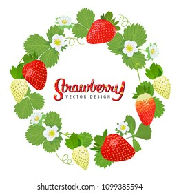 Strawberries plant wreath with leaves, stems and flowers on white background template. Vector set of fruit element for advertising, packaging design of strawberry products.