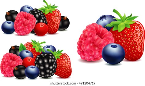 strawberry, blackberry, raspberry, blueberry in different group