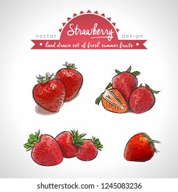Strawberry. Hand drawn collection of vector sketch detailed fresh fruits. Isolated