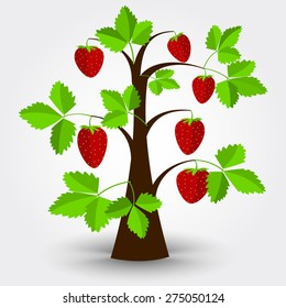 Strawberry tree isolated on a gray background with shadow. Editable.