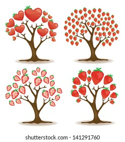 strawberry tree. vector illustration.