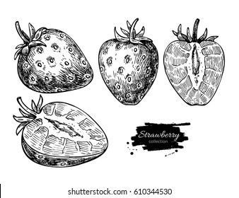 Strawberry vector drawing set. Isolated hand drawn berry and  slice on white background.  Summer fruit engraved style illustration. Detailed vegetarian food. Great for label, poster, print