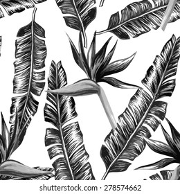 Strelitzia and banana leaves black and white seamless background