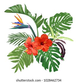Strelitzia, hibiscus and tropical leaves. Exotic bouquet. Vector illustration.