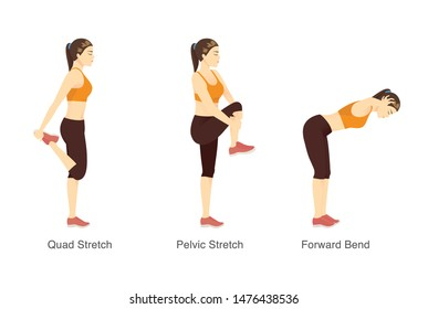 Stretching workout in standing posture with sport woman. Illustration about exercise diagram.