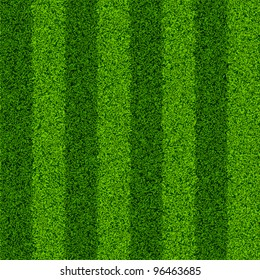 Striped green grass field. Seamless vector.