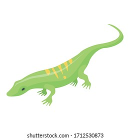 Striped green lizard icon. Isometric of striped green lizard vector icon for web design isolated on white background