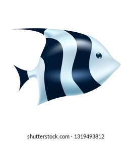 Striped tropical bannerfish. Realistic coral reef fish, longfin coachman exotic underwater animal. Summer sea diving, travelling and vacation decoration, marine and aquarium world design. Vector