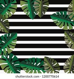 stripes plam leaves tropical summer background