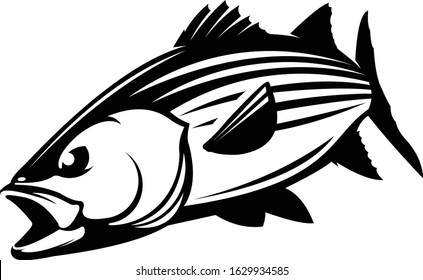 Stripped Bass Logo Template, a Unique Strong and Masculine Stripped bass Outline art. Great for fishing logo