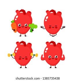 Strong cute healthy happy human heart organ character set. Vector flat cartoon illustration icon design. Isolated on white background. Healthy human heart make gym,meditate in yoga,sport concept