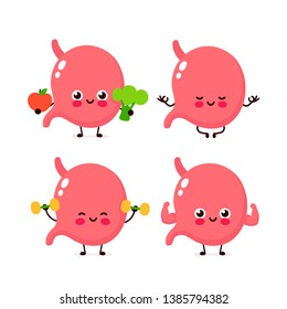 Strong cute healthy happy human stomach organ character set. Vector flat cartoon illustration icon design. Isolated on white background. Healthy human stomach make gym,meditate in yoga,sport concept