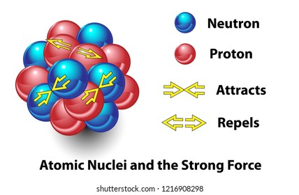 Strong force in the nucleus of an atom . This science diagram shows the force that repels and attracts neutrons and protons. This type of interaction binds together nuclei.