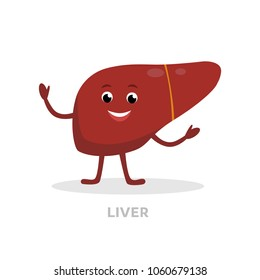 Strong healthy liver cartoon character isolated on white background. Happy liver icon vector flat design. Healthy organ concept medical illustration.