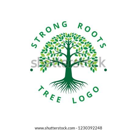 strong root tree life vector logo stock vector royalty free